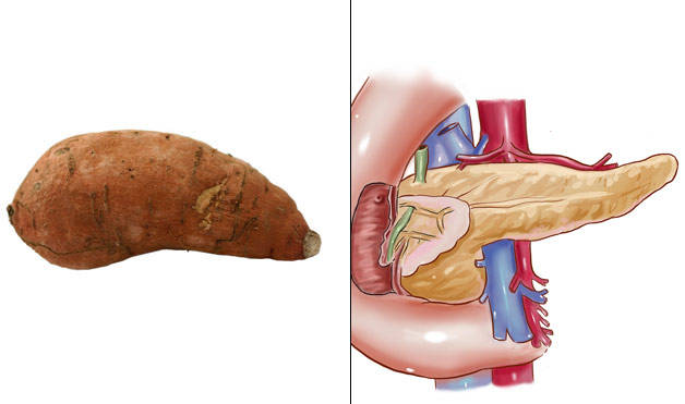 Sweet-Potatoes-Pancreas Foods-That-Look-Like-Body-Parts