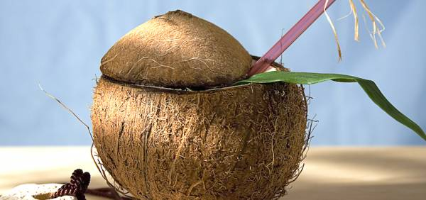 10 Things You Don't Know About Coconuts and Health Food
