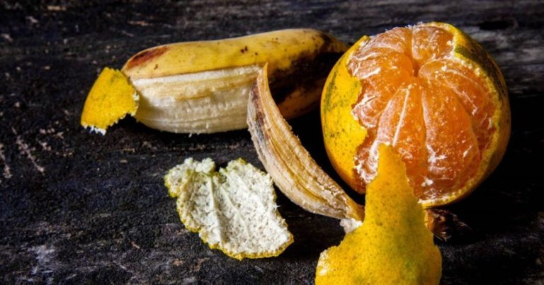 20 Amazing Uses for Orange and Banana Peels: Don't Throw Them Away!