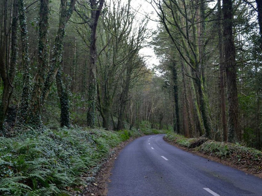 This small mountain pass towards Aherlow in Ireland was out of the way but very scenic