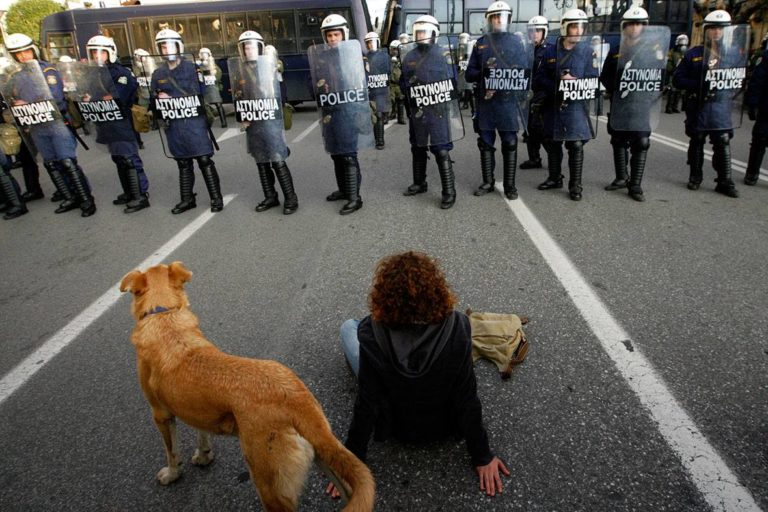 The Touching Story of Loukanikos and Other Greek Riot Dogs