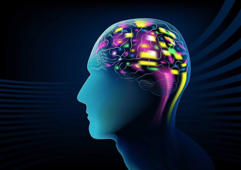Read more about the article 7 Great Foods for Memory and Cognitive Functions