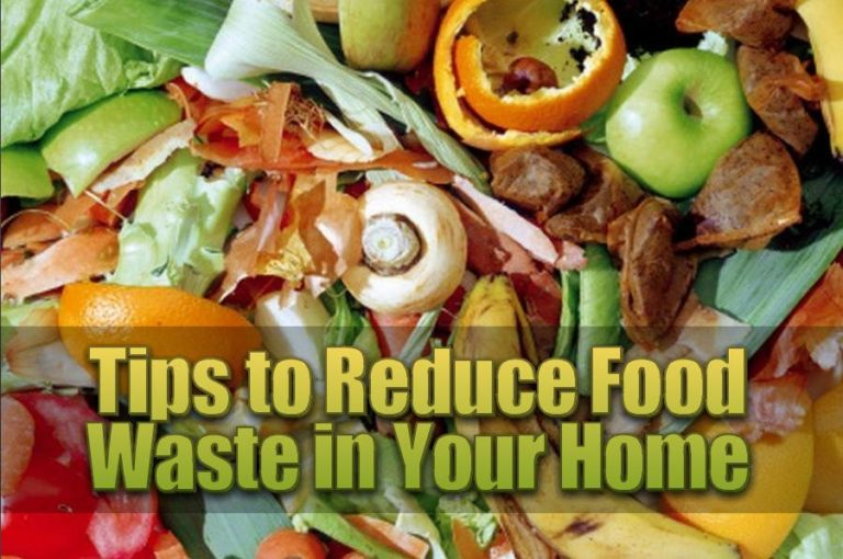 How to Reduce Food Waste in Your Home and Why You Should Do It