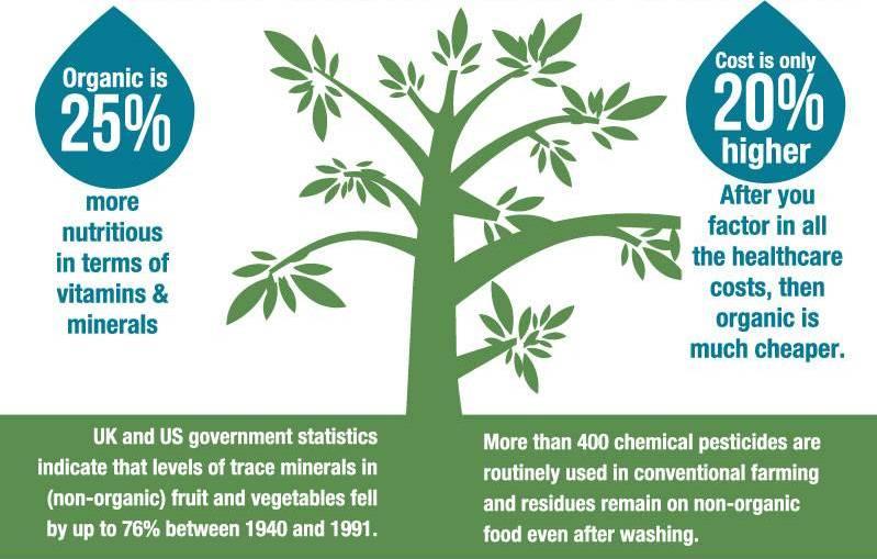 Food Organic Vs Conventional
