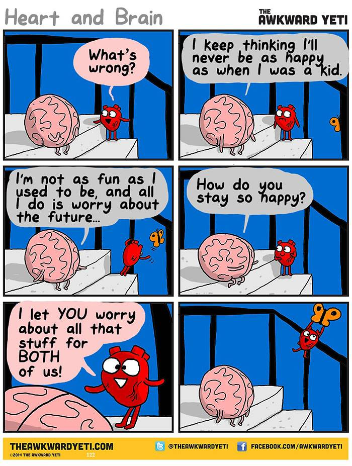 Heart and Brain - emotions and logic