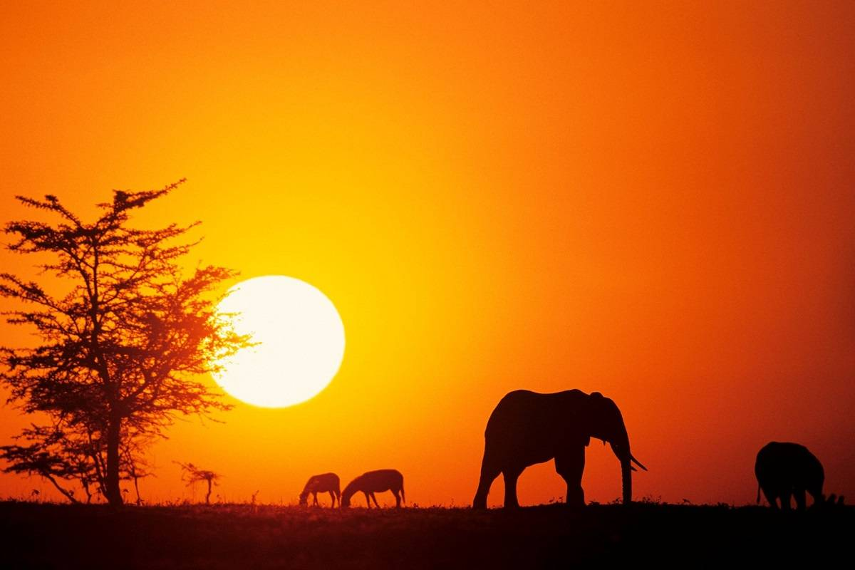 Magnificent Sunsets Kenya, Africa