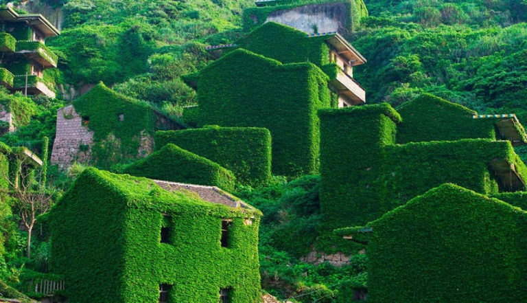 Stunning Photos of China's Shengshan Island Show an Abandoned Village Being Overtaken by Nature