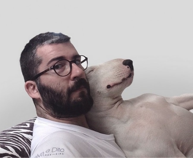This Guy's Ex Took Everything with Her but Their Bull Terrier. Here's What Happened Next