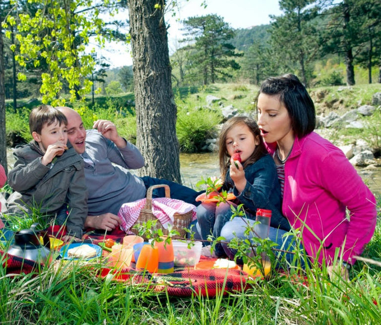 The Ultimate Guide to Picnics: Hacks, Tips and Tricks