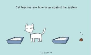 Owning a cat captured in funny illustrations