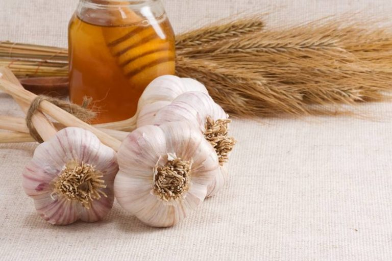 What Happens to Your Body When You Eat Garlic with Honey on an Empty Stomach for 7 Days