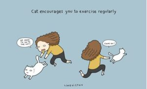 vowning-a-cat-funny-illustrations-15