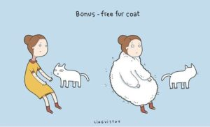 owning-a-cat-funny-illustrations-2