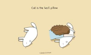 owning-a-cat-funny-illustrations-20