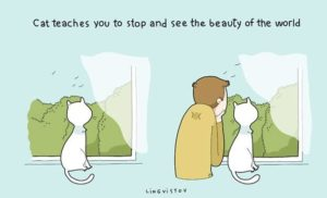 owning-a-cat-funny-illustrations-4