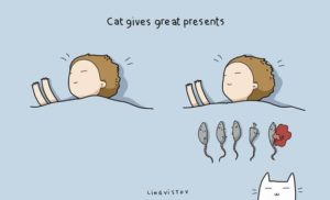 owning-a-cat-funny-illustrations-5