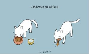 owning-a-cat-funny-illustrations-6