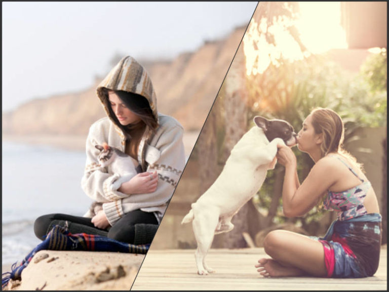 Dog People Have a Lot of Friends, Cat People Tend to Be Single, Facebook Study Reveals