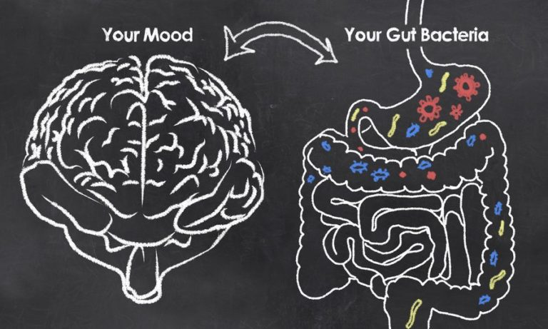 The Root of Your Poor Digestive Health May Be Hidden in Your Emotional Issues