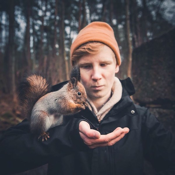 Wildlife Images by 21-Year-Old Finnish Photographer