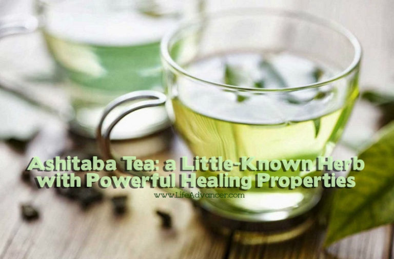 Read more about the article Ashitaba Tea: a Little-Known Herb with Powerful Healing Properties
