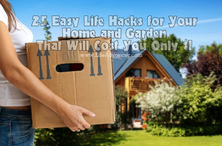 25 Easy Life Hacks for Your Home and Garden That Will Cost You Only $1