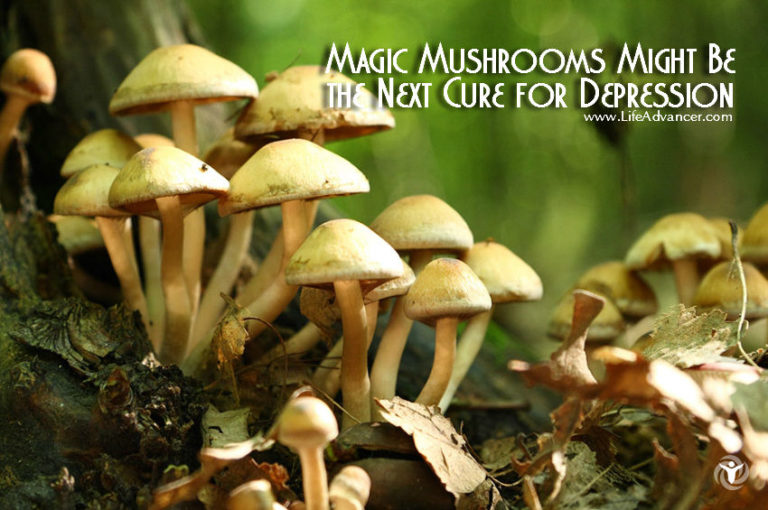 Psilocybin and Depression: Magic Mushrooms Found to Be Effective in 80% of Cases