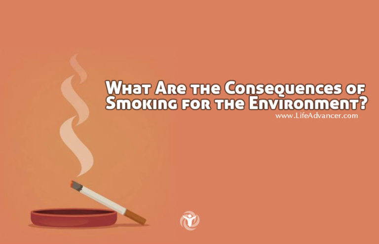 What Are the Consequences of Smoking for the Environment?
