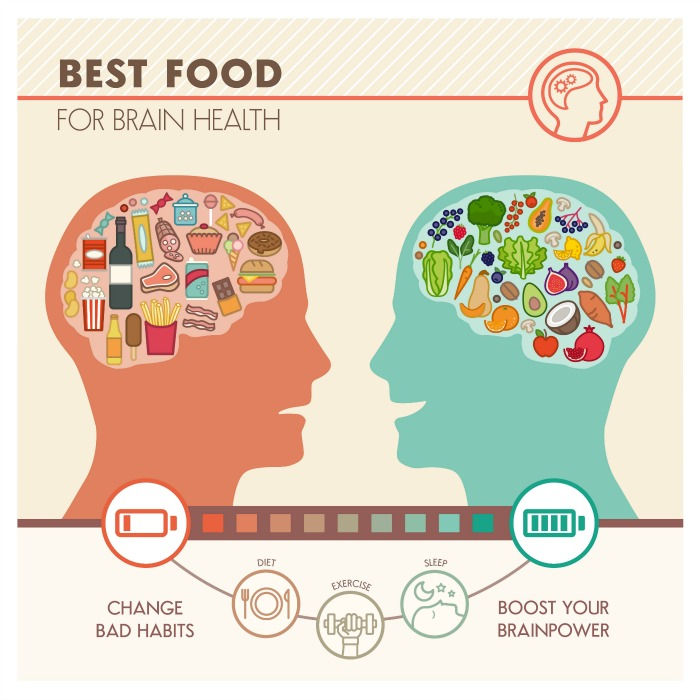 Brain Foods That Will Enhance Your Memory and Mental Power