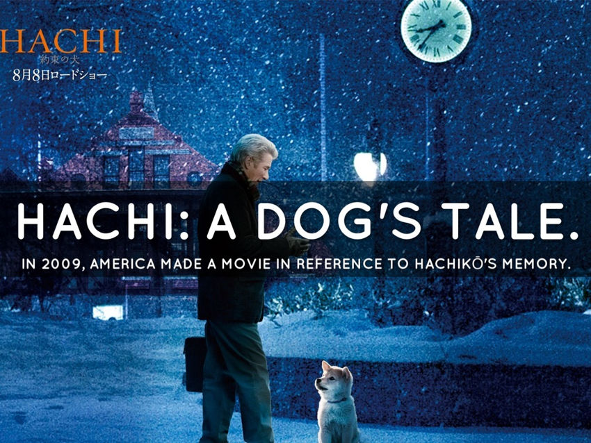 Hachi, a dog's tale (2009)