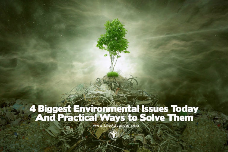 4 Biggest Environmental Issues Today & Practical Solutions
