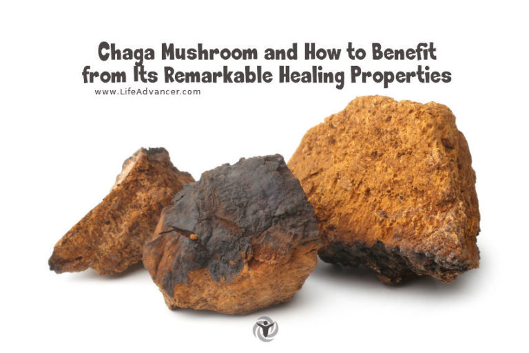 Chaga Mushroom and How to Consume It for Health Benefits