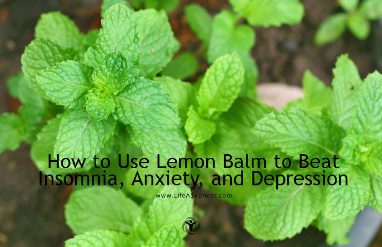 How to Use Lemon Balm to Beat Insomnia, Anxiety and Depression