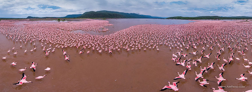Lake Bogoria, Kenya - bird's-eye view