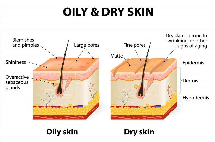 skincare products for oily skin easily at home