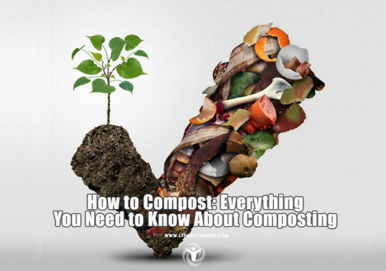 How to Compost: Everything You Need to Know about Composting