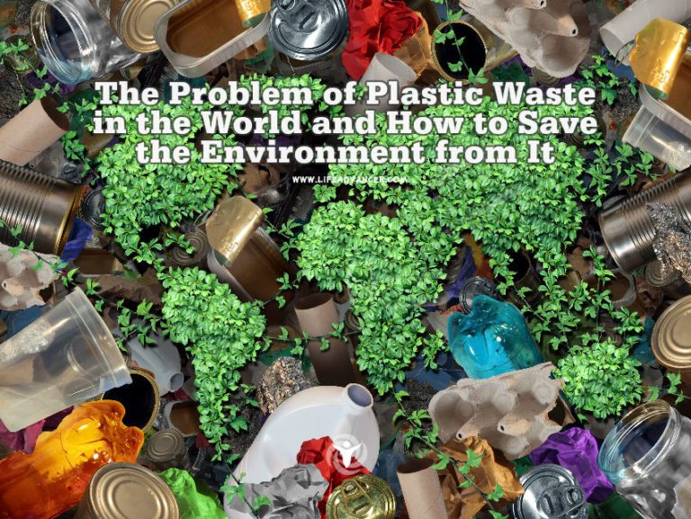 The Problem of Plastic Waste in the World and How to Save the Environment from It
