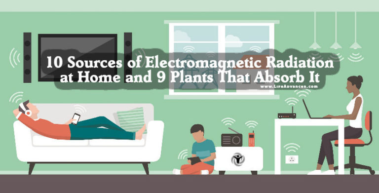 Sources of Electromagnetic Radiation & Plants to Have at Home