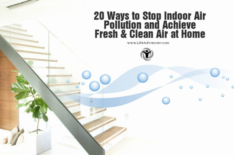 20 Ways to Stop Indoor Air Pollution and Achieve Fresh & Clean Air at Home