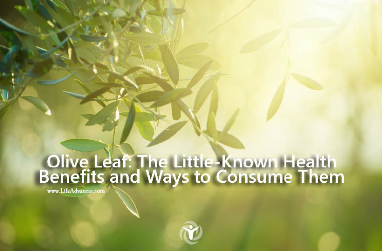 Olive Leaf: Little-Known Health Benefits & Ways to Consume