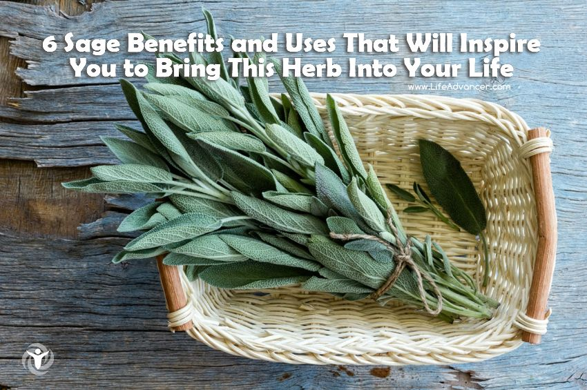 Sage Benefits and Uses