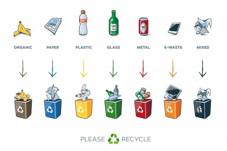 What Can Be Recycled and What Can't: How to Recycle Correctly