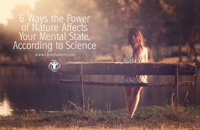 Ways the Power of Nature Affects Your Mental State