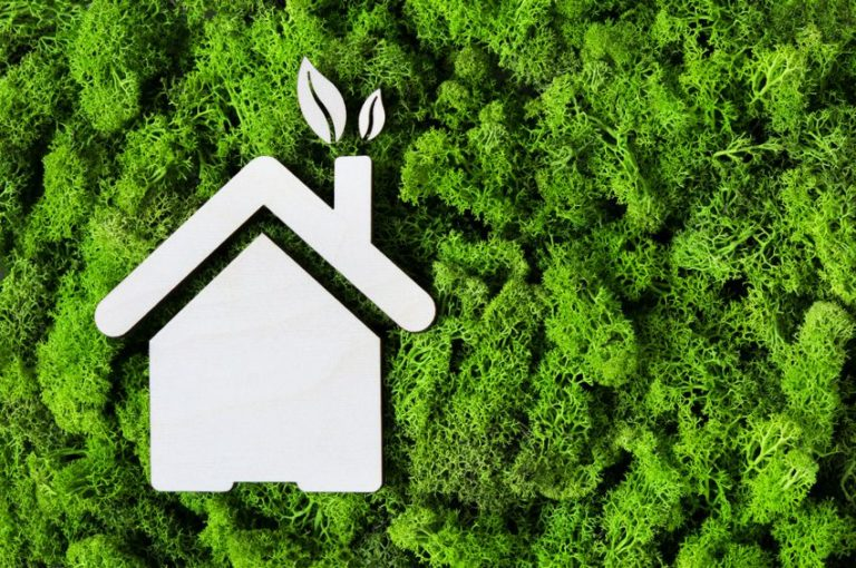 6 Simple Steps to an Eco-Friendly House You Should Follow