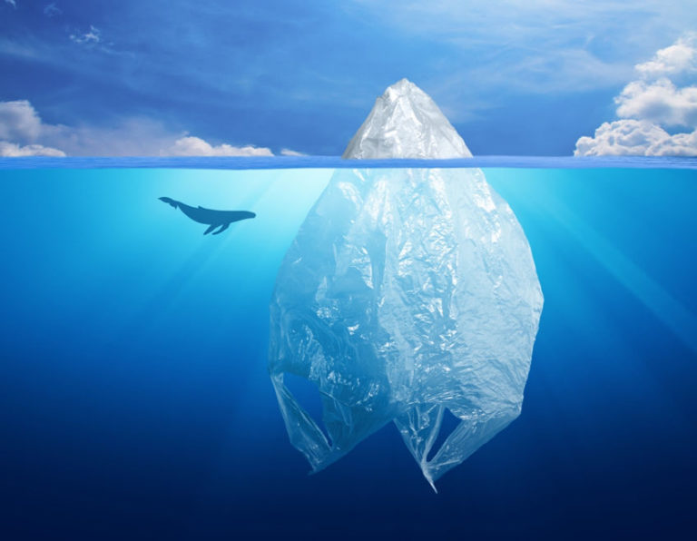 Read more about the article 5 Unexpected Ways Plastic Pollution in the Ocean Affects You