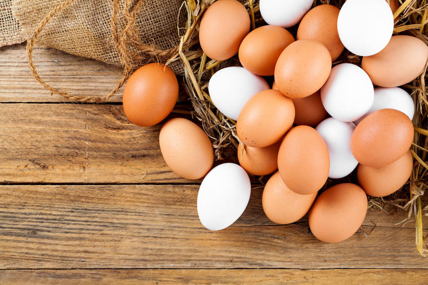 What's The Difference Between Brown Eggs And White Eggs And Which Ones Are Better