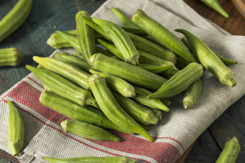 Okra Final Thoughts