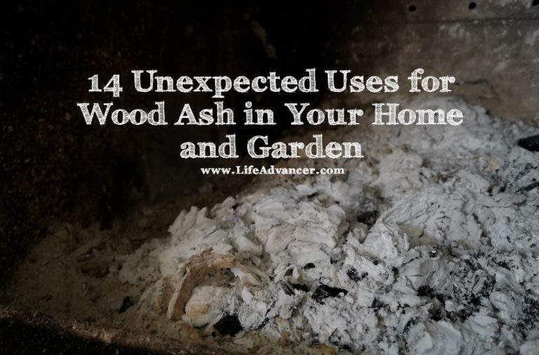 14 Unexpected Uses for Wood Ash in Your Home and Garden