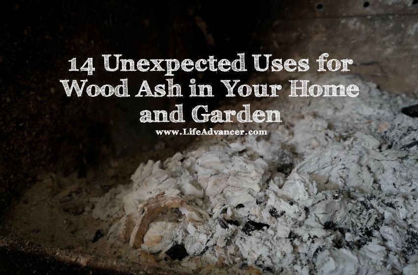 uses for wood ash