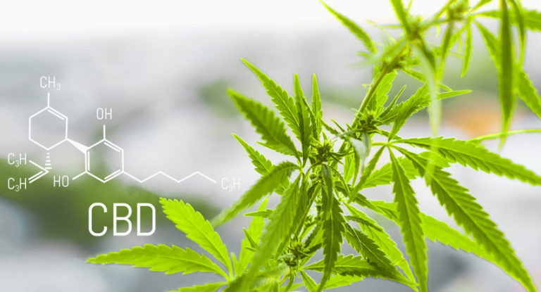 9 CBD Benefits That Can Improve Your Overall Health and Life
